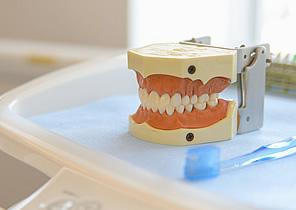 特徴-写真3(千代田町磯歯科医院)